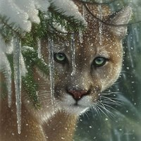 Cougar - Frozen Framed Print