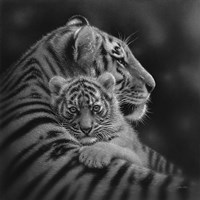 Tiger Mother and Cub - Cherished - B&W Framed Print