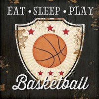 Eat, Sleep, Play, Basketball Fine Art Print