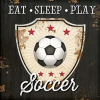 Eat, Sleep, Play, Soccer Fine Art Print