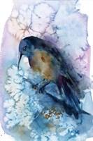 Bird Abstract II Fine Art Print