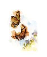 Butterflies V Fine Art Print