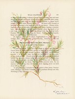 Wild Rosemary Fine Art Print