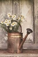 The Friendliest Flowers Fine Art Print