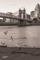 Suspension Bridge I Fine Art Print