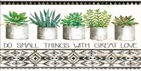 Do Small Things Succulents Fine Art Print
