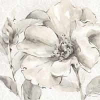 Indigold IV Gray Fine Art Print