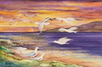 Seagull Sunset Fine Art Print