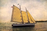 Morning Sail Fine Art Print