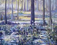 Blue Bayou Swamp Fine Art Print
