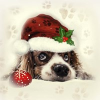 Christmas Puppy Fine Art Print
