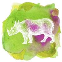 Color Spot Safari Animals Rhino Fine Art Print