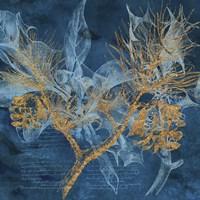 Teal Garden Winter Fine Art Print
