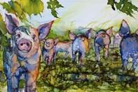 Pig Tales Fine Art Print