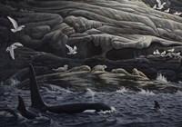Gabriola Island Gathering Fine Art Print