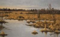 Muskrat Marsh Fine Art Print