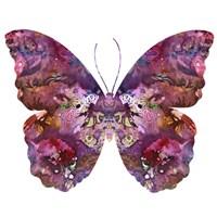 Cinematic Butterfly Fine Art Print