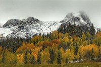 A Rocky Mountain Autumn Fine Art Print