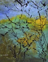 Branches in the Sun Fine Art Print
