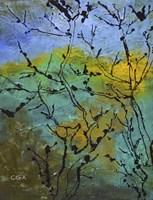 Branches in the Sun Fine Art Print