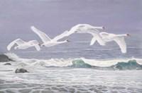 Riders On The Storm Fine Art Print