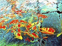 Koi Carp Abstraction Fine Art Print
