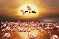 Flamingo Land 2D Fine Art Print