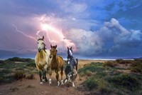 Wild Horses Of The Sea Fine Art Print