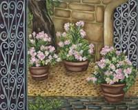 California Pots Pinks Fine Art Print
