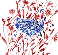 Red White & Blue 2 Fine Art Print