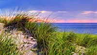 Cape-Dune Sunset Fine Art Print