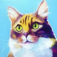 Cat - Willow Fine Art Print