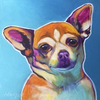Chihuahua - Starr Fine Art Print