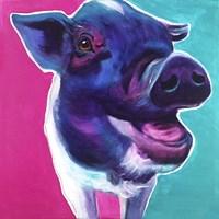Pig - Sophie Fine Art Print