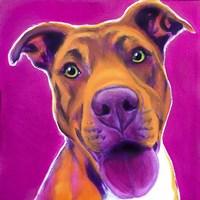 Pit Bull - Bama Fine Art Print