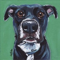 Black Dog On Emerald Fine Art Print