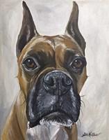 Boxer Kyleigh Fine Art Print