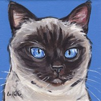 Cat Siamese On Blue Fine Art Print