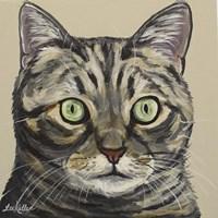 Cat Tabby Ontan Fine Art Print