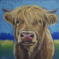 Cow Fergus Scottish Higland Cow Fine Art Print