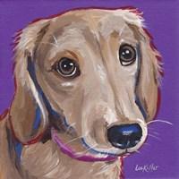 Daschund Purple Fine Art Print