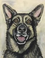 German Shepherd On Neutral Fine Art Print