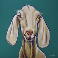 Goat On Teal Fine Art Print