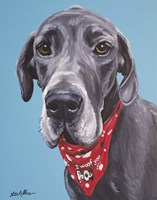 Great Dane Jake Fine Art Print