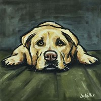 Lab In Floor Fine Art Print