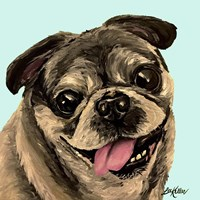 Pug On Turquoise Fine Art Print