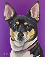 Rat Terrier On Purple Fine Art Print