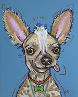 Chinese Crested Spike Fine Art Print