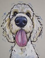 Goldendoodle Murphy Fine Art Print