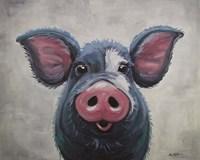 Pig Lulu Fine Art Print